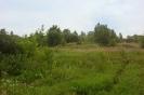 Никитино 05-07.07.2013